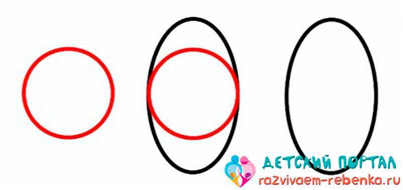 Рисуем овал с помощью круга