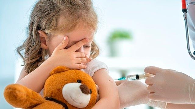 Количество плановых прививок для детей Фото