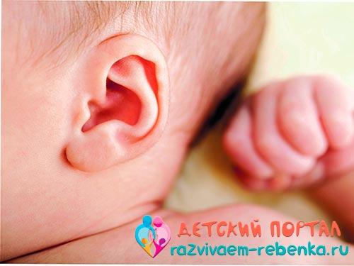 Фото уха новорожденного ребенка